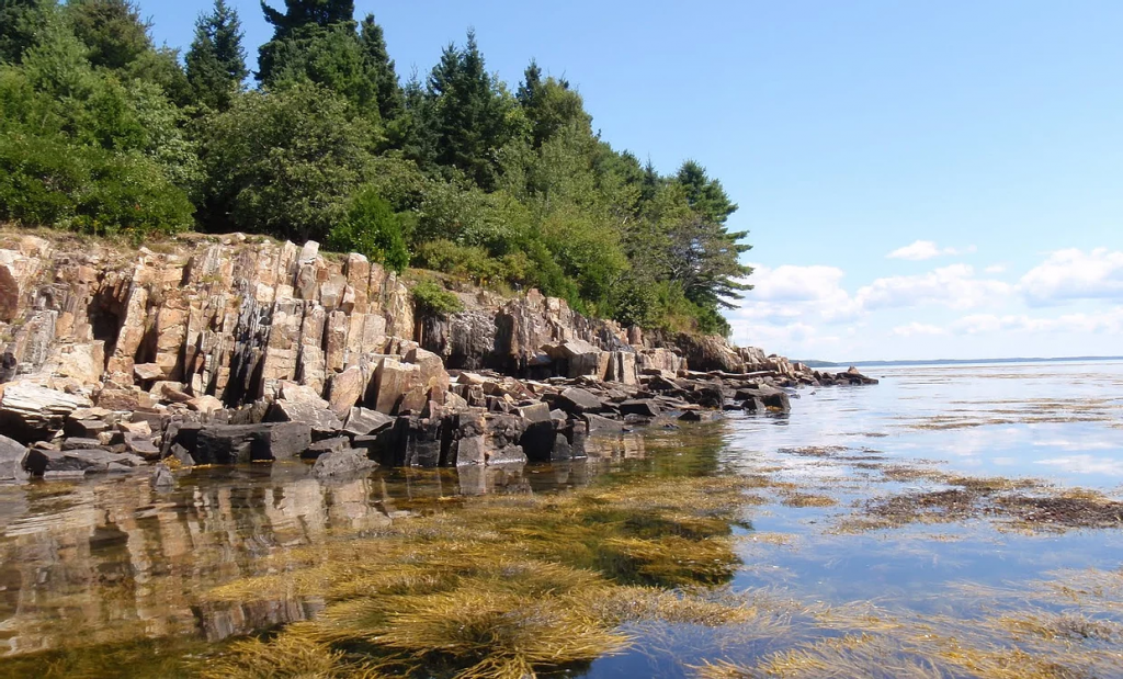 Moose Point State Park